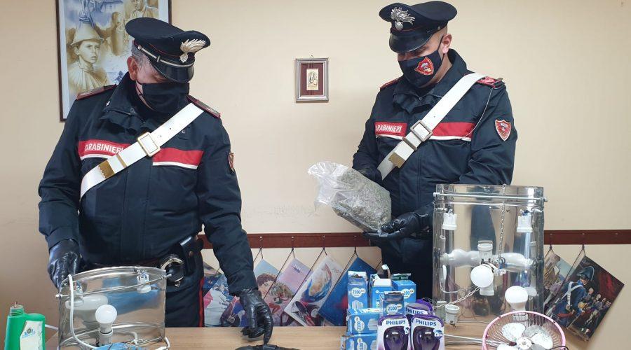 Giardini Naxos: deteneva quasi mezzo chilo di marijuana. Arrestato 45enne