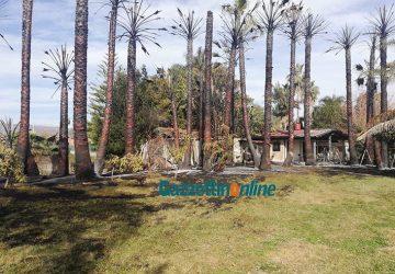 Mascali, fiamme divampano in un terreno privato di via Strada 7: danni a palme e rimessa. Dolosa l'origine