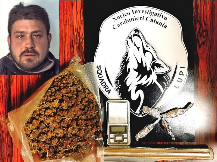 """Catania, i """"Lupi"""" lo stanano mentre spaccia dentro casa: arrestato"""