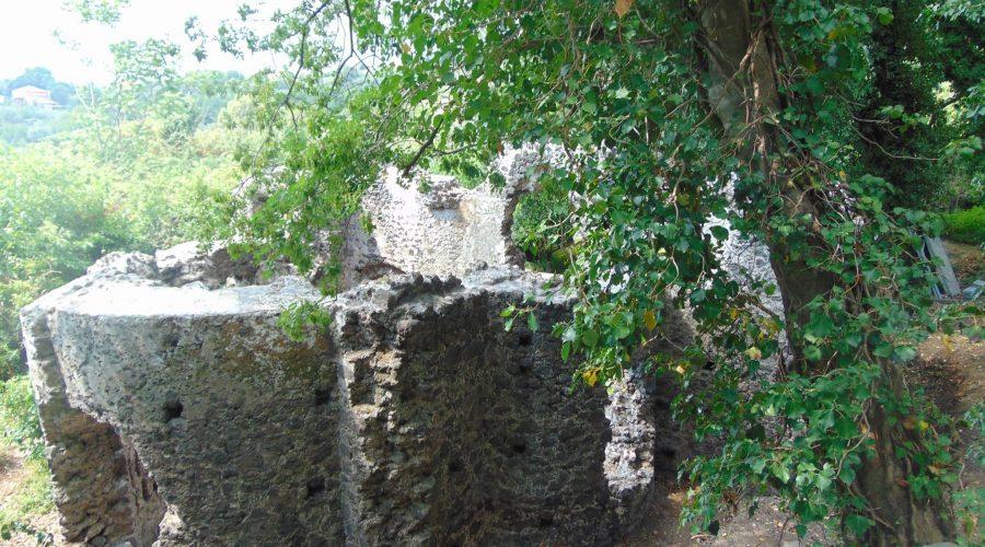 Dagala del Re, la cuba bizantina protagonista delle Giornate europee dell'archeologia