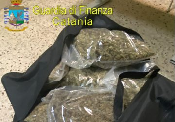 Sequestrati 37 kg di marijuana ad alto potenziale e 150 munizioni: due arresti