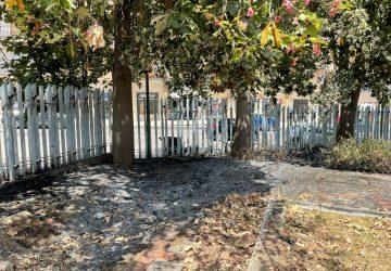 Giarre, principio incendio al parco Jungo. Intervento dei Vvff scongiura il disastro