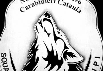 Catania, beccato dai Lupi con la coca in auto