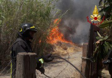Vigili del fuoco, numerosi roghi a Catania e provincia