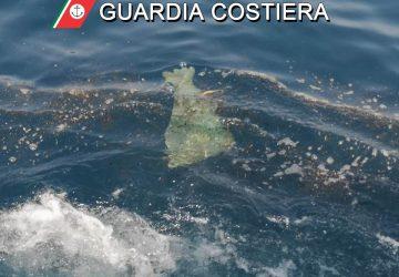 Inquinamento in mare da Calatabiano a Riposto: avviate indagini sulle cause dalla Guardia Costiera
