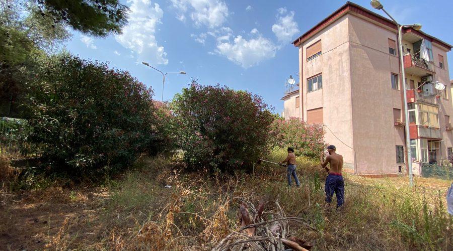 Giarre, quartiere Satellite assediato da una foresta di rovi. Allarme incendi VIDEO