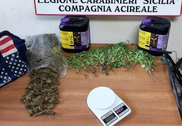 Acireale, produceva in proprio la marijuana da piazzare al dettaglio