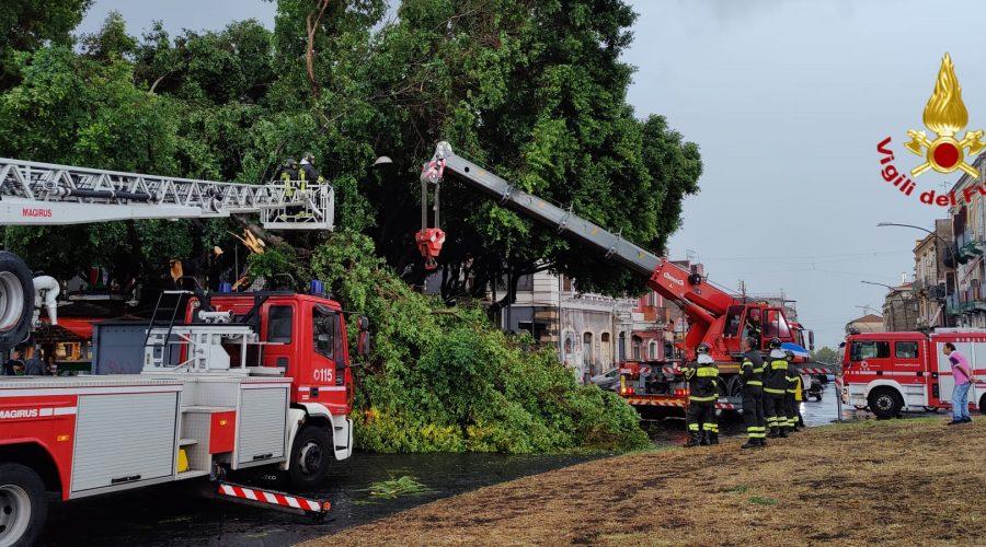 Allerta meteo, allagamenti e alberi caduti a Catania. Decine di interventi dei Vvff