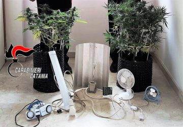 Acireale, marijuana fai da te: arrestato incensurato
