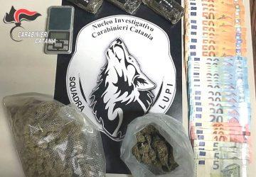 Catania, beccato dai Lupi con la droga in cucina: arrestato