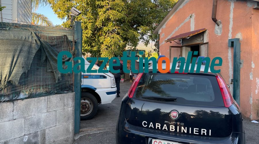 Blitz dei carabinieri di Messina in un casolare di Altarello: trovate decine di sedie rubate